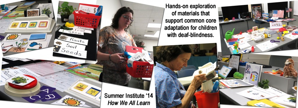 Summer Institute 2014 -- How We All Learn